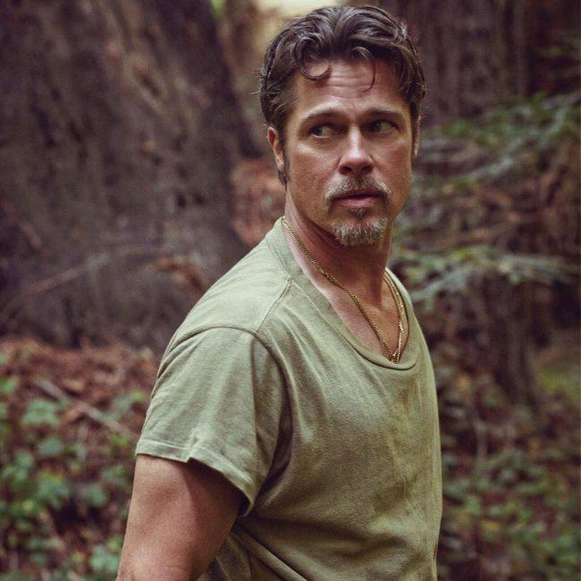 Brad Pitt Hairstyles 46