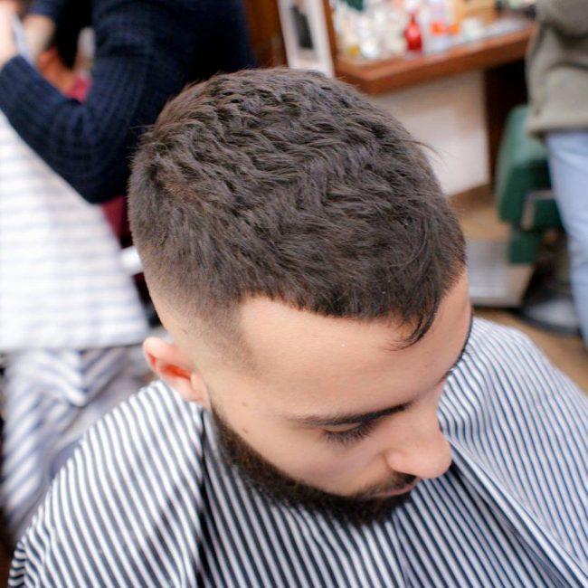 Caesar Haircut 42