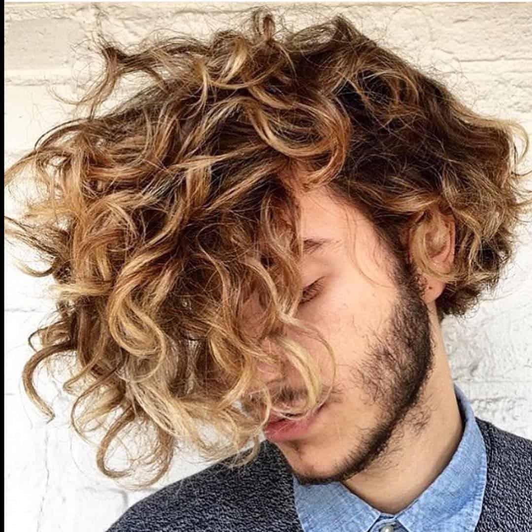 Curly Locks Everywhere