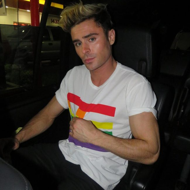 Zac Efron Hair 30