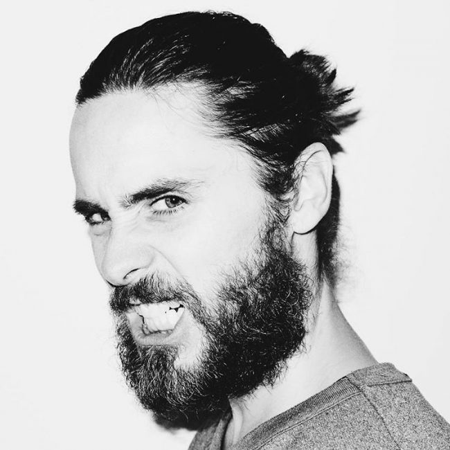 Short Ponytail with Thick Beards