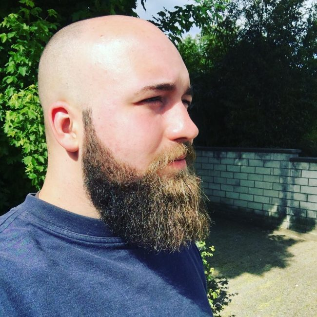 Epic Bald Head and Bearded