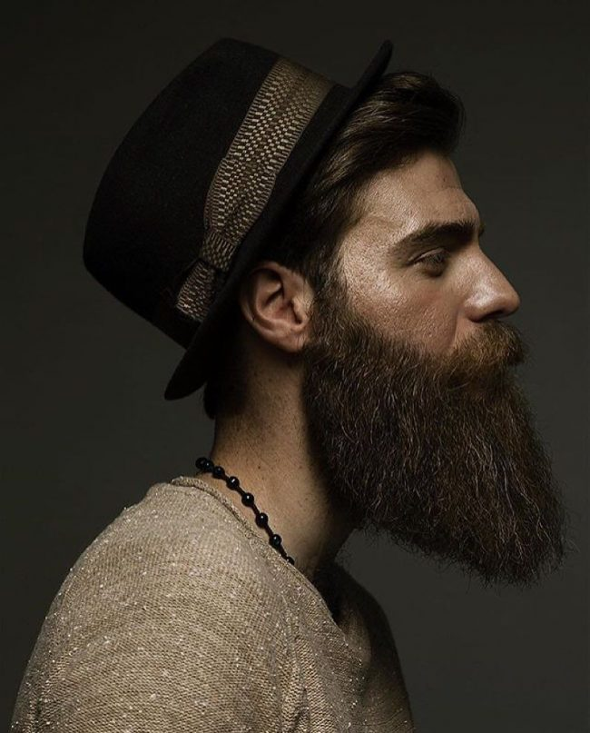 Long Beard Styles 34