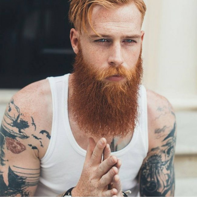 Long Beard Styles 45