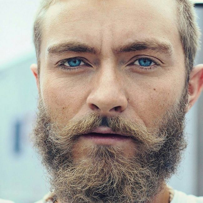 100 Best 25 Beard And Mustache