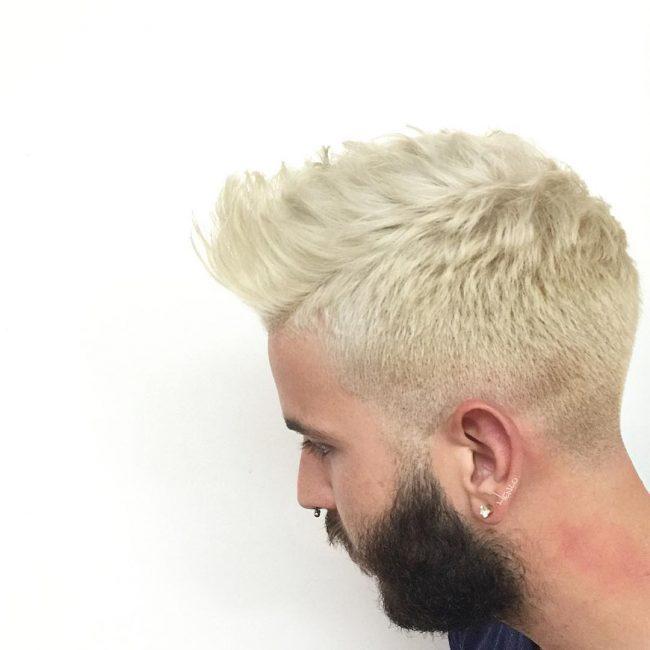 Well Groomed Blondie Locks