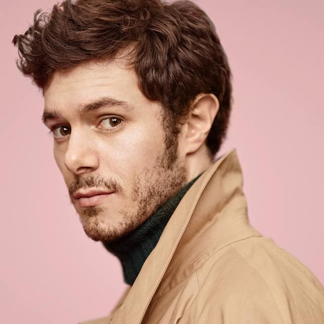 adam brody with patchy beard