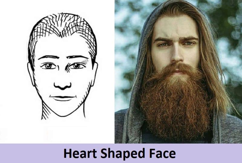 long beard for heart face shape